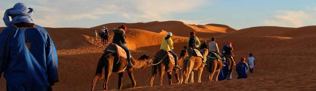 Riding Camels through a desert